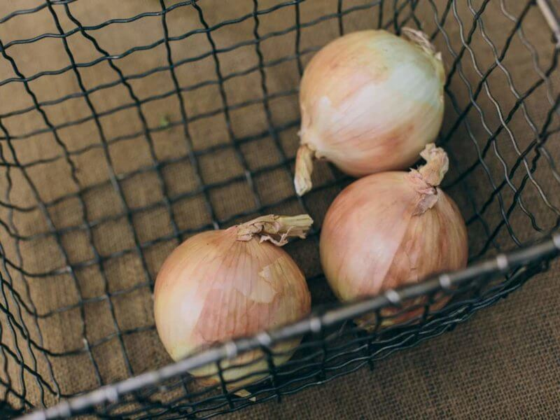 Tips before freezing onions