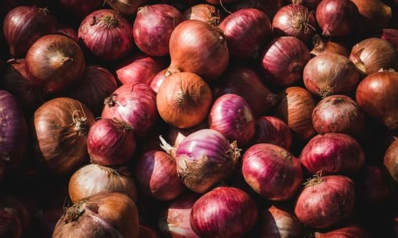 best way to store onions